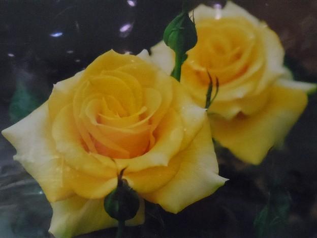 銅賞「雨上がり」今井誠造さんの作品