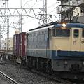 写真: pf1041-20080320