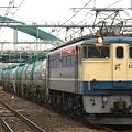 写真: pf1041-20090204