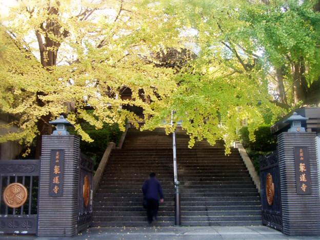 赤塚山乗蓮寺の正門