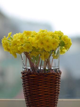 モンミュゼ5月お花1