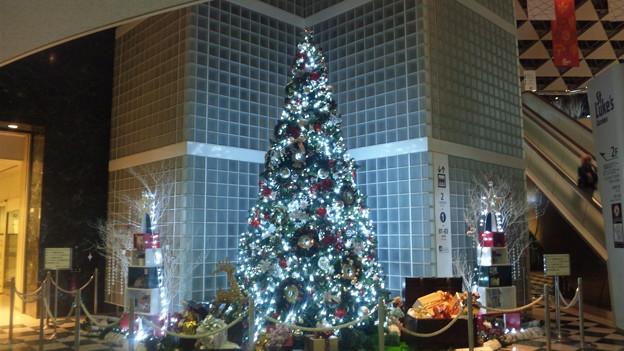 聖路加ガーデン2011クリスマスツリー