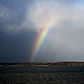 Photos: 冬の虹