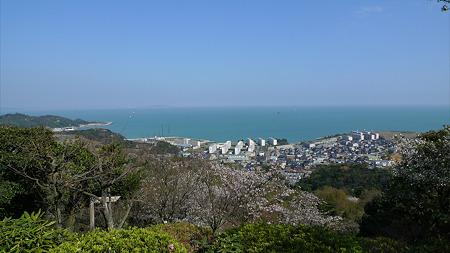 白野江植物公園(5)