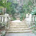 写真: 鎮国寺の奥の院参道八十八ヶ所巡拝路