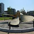 Photos: かもめ広場(1)