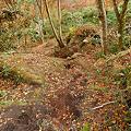 写真: 一目八景~見晴らし台への登山道?