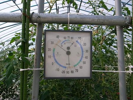ハウス温度