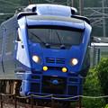 883系 青いソニック