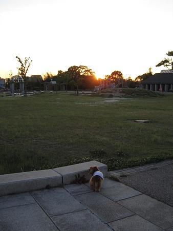 20100616 004