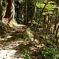 Photos: 滝見へと向かう石の遊歩道