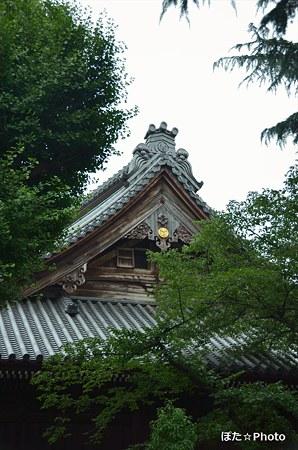屋根が好き 寛永寺