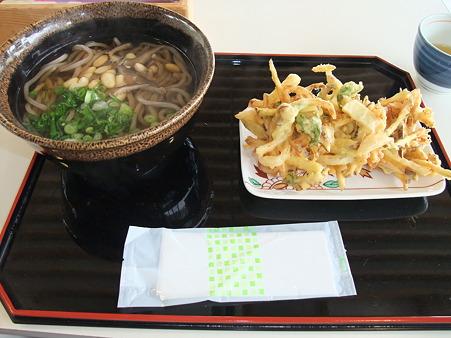 かき揚げうどん(道の駅・フレッシュパークからり【愛媛】)