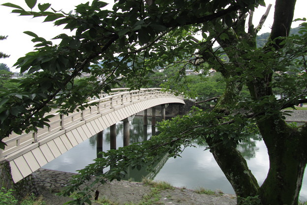 京都 宇治 -40