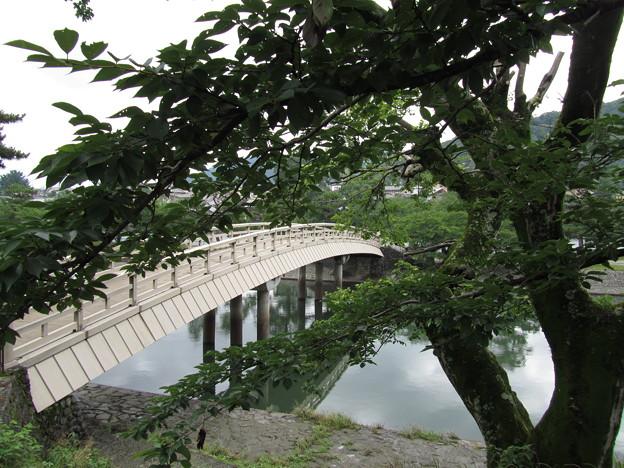 京都 宇治 -41